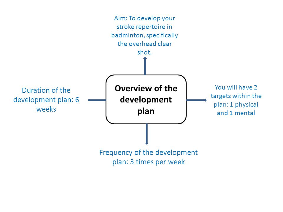 Overview of the development plan