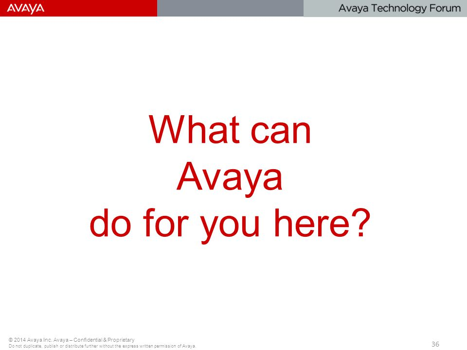 What can Avaya do for you here