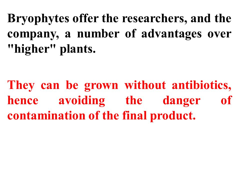 Bryophytes offer the researchers, and the company, a number of advantages over higher plants.