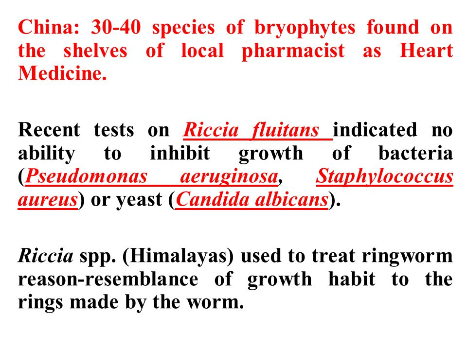 China: 30-40 species of bryophytes found on the shelves of local pharmacist as Heart Medicine.