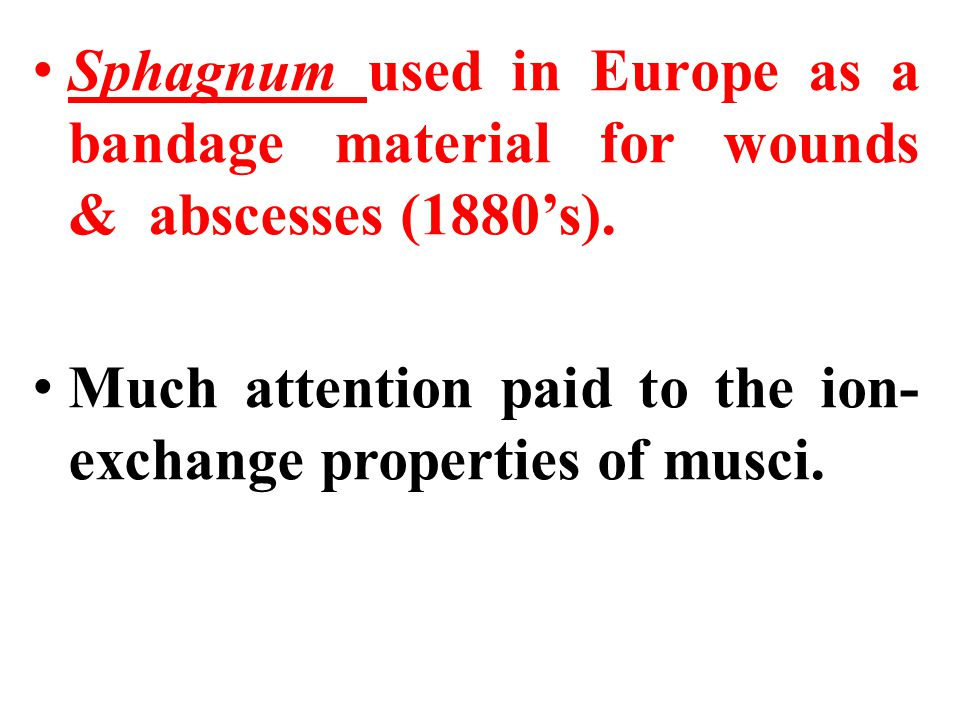 Sphagnum used in Europe as a bandage material for wounds & abscesses (1880's).
