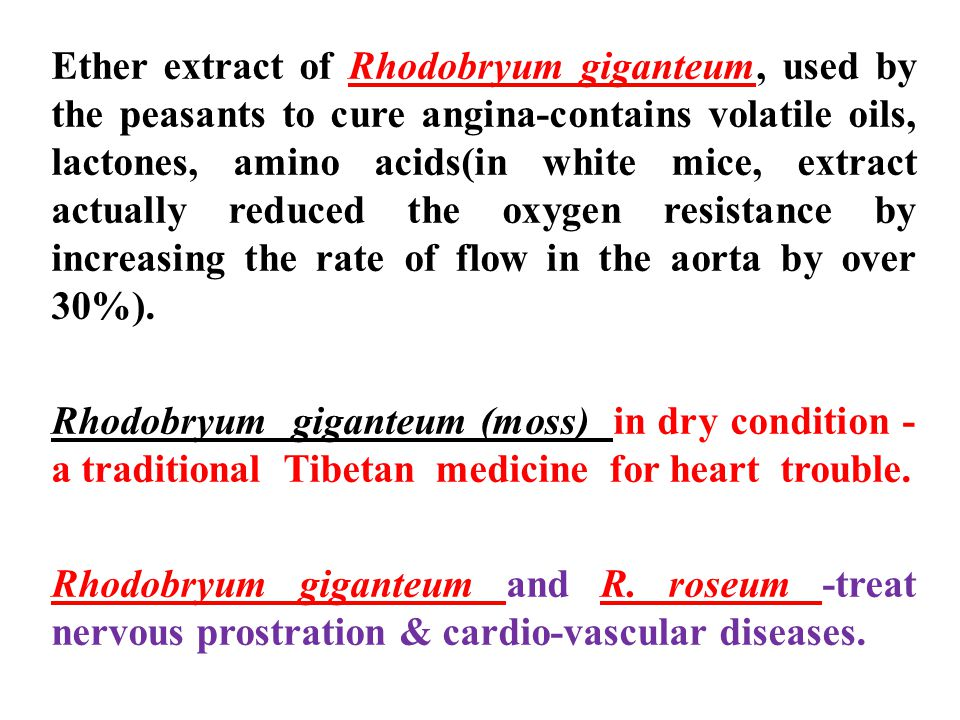 Ether extract of Rhodobryum giganteum, used by the peasants to cure angina-contains volatile oils, lactones, amino acids(in white mice, extract actually reduced the oxygen resistance by increasing the rate of flow in the aorta by over 30%).
