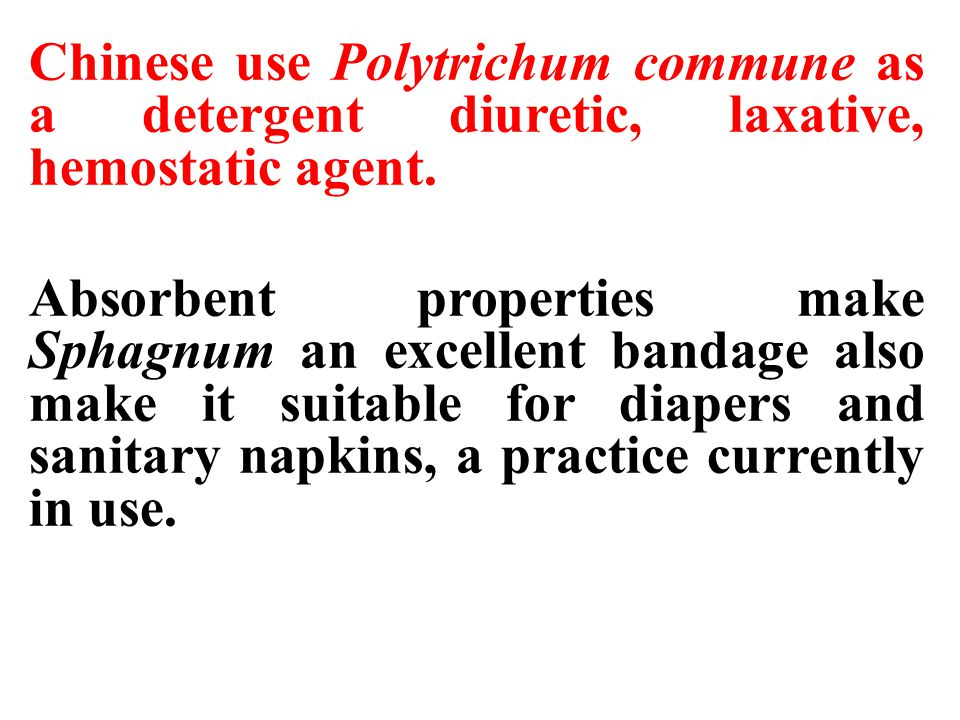 Chinese use Polytrichum commune as a detergent diuretic, laxative, hemostatic agent.