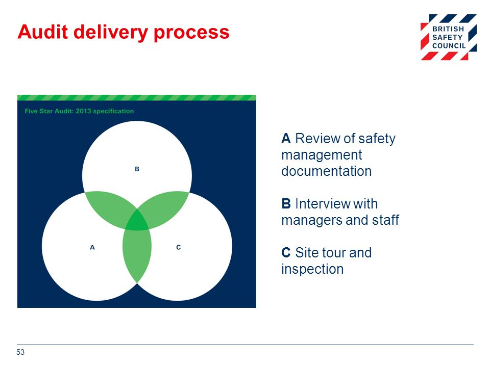 Audit delivery process