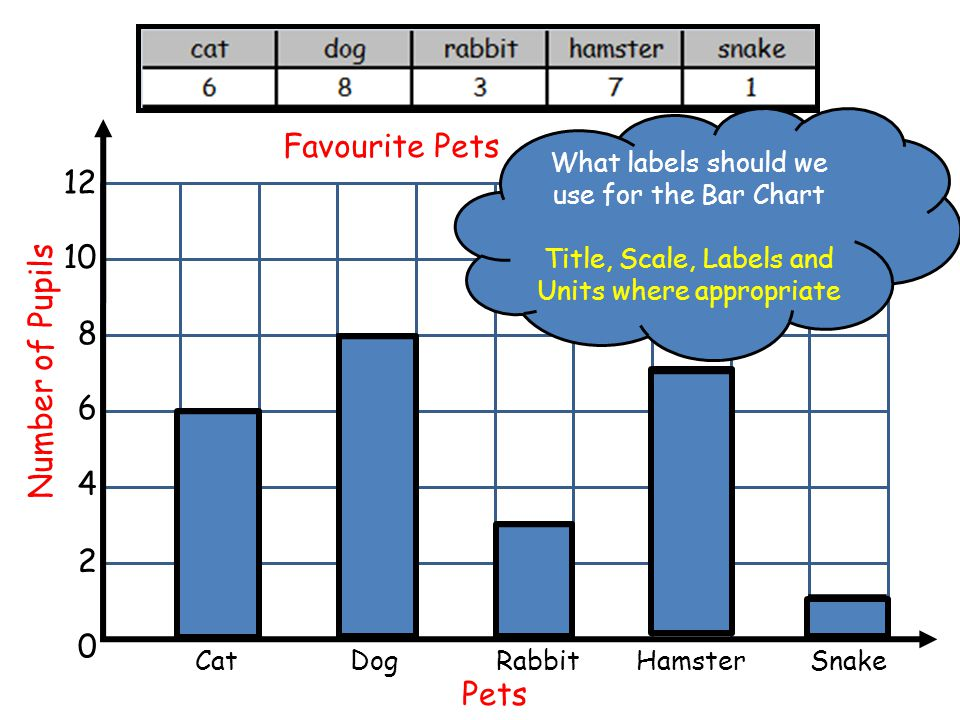 Favourite Pets 12 10 Number of Pupils 8 6 4 2 Pets