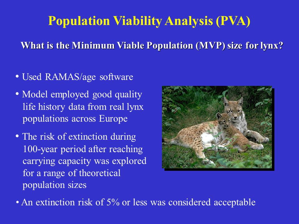 An extinction risk of 5% or less was considered acceptable