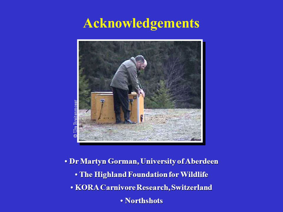 Acknowledgements Dr Martyn Gorman, University of Aberdeen