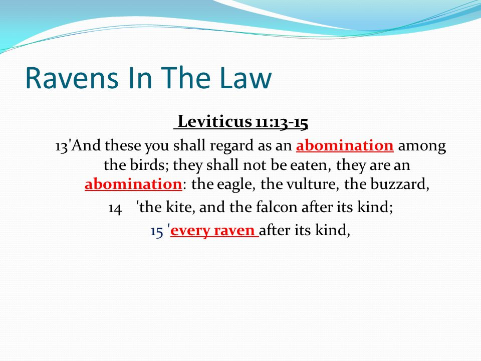 Ravens In The Law Leviticus 11:13-15