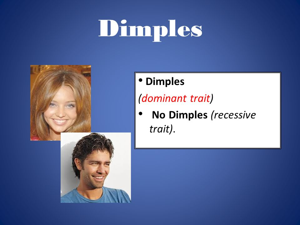 Dimples Dimples (dominant trait) No Dimples (recessive trait).