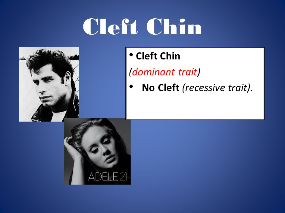 Cleft Chin Cleft Chin (dominant trait) No Cleft (recessive trait).