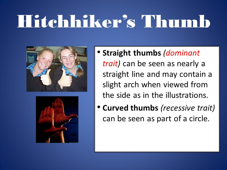 Hitchhiker's Thumb