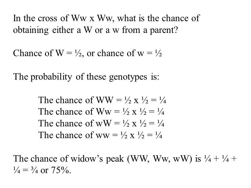 In the cross of Ww x Ww, what is the chance of obtaining either a W or a w from a parent