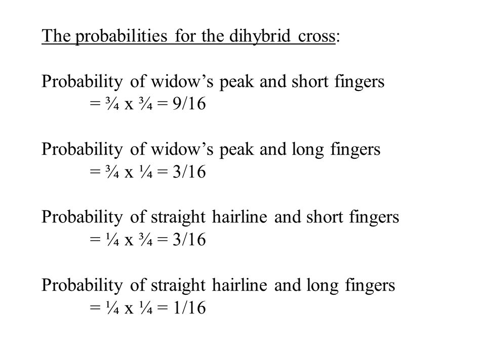 The probabilities for the dihybrid cross: