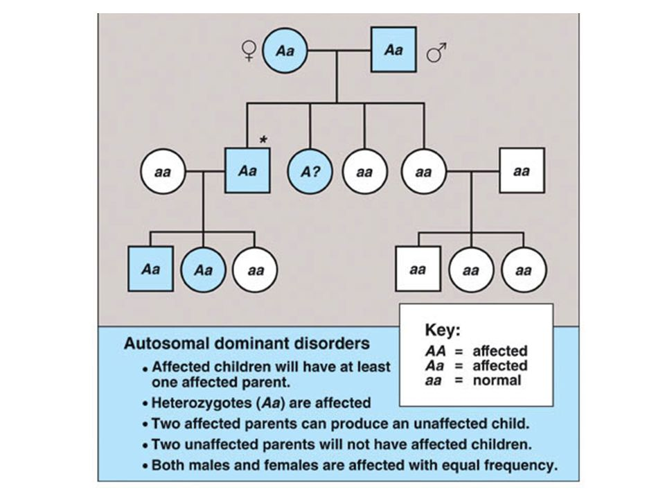 Autosomal dominant disorders have these characteristics: