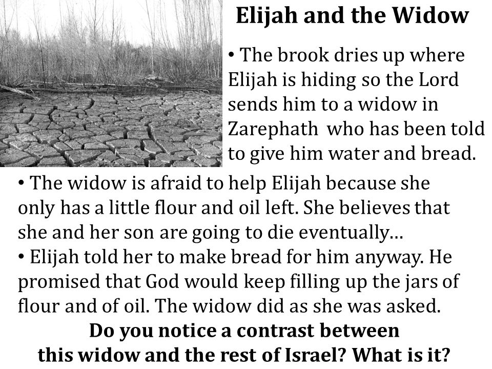 Elijah and the Widow