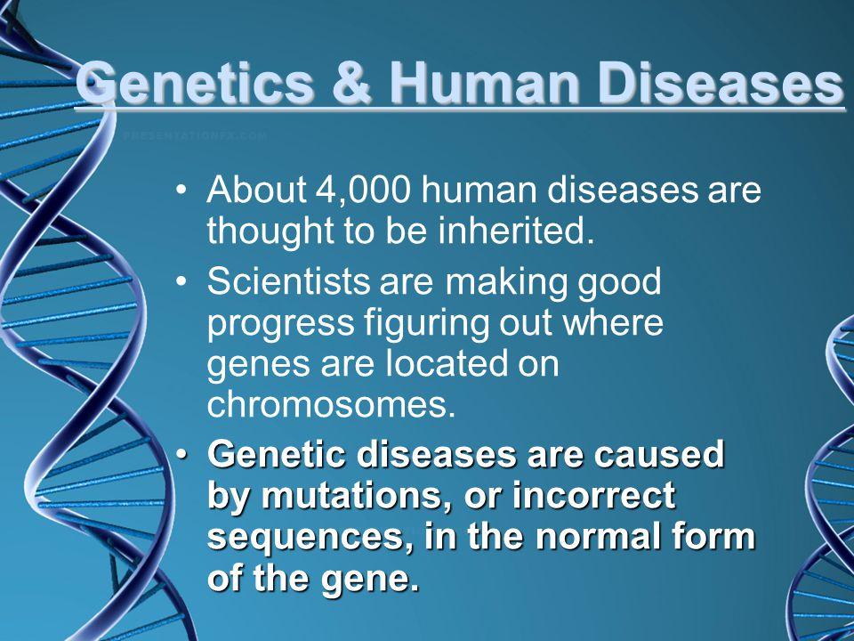 Genetics & Human Diseases