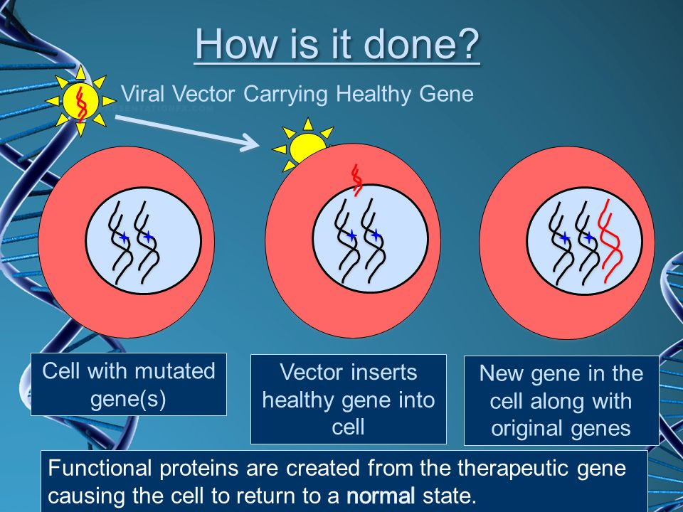 How is it done Viral Vector Carrying Healthy Gene