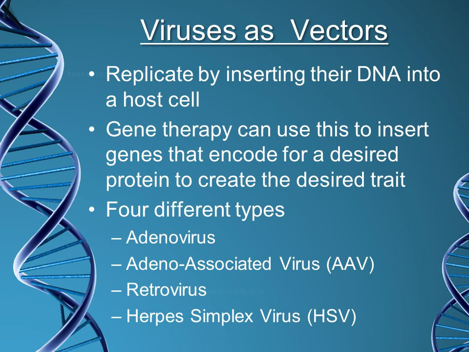 Viruses as Vectors Replicate by inserting their DNA into a host cell