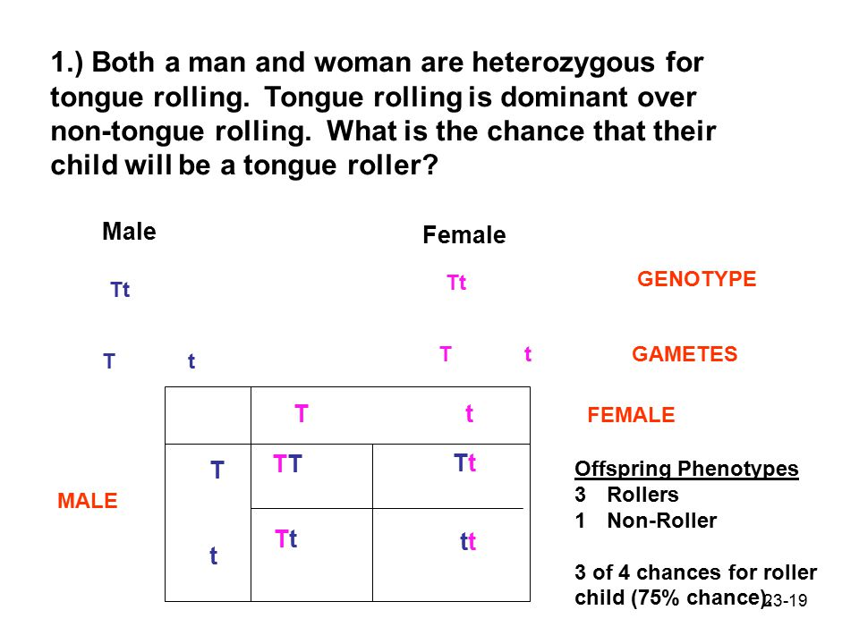 1.) Both a man and woman are heterozygous for