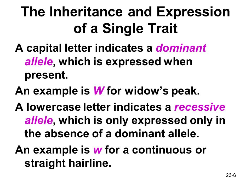 The Inheritance and Expression of a Single Trait