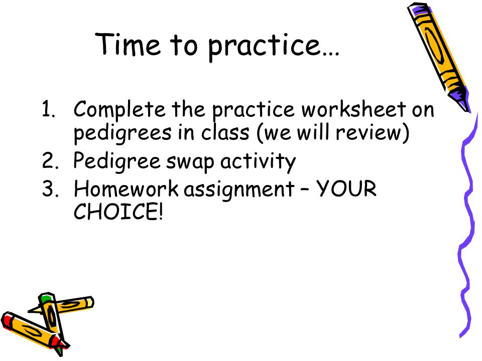 Making a Pedigree Chart ppt download – Pedigree Practice Worksheets