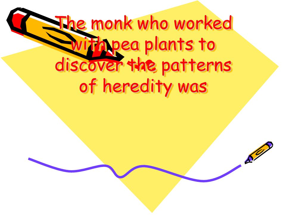 The monk who worked with pea plants to discover the patterns of heredity was