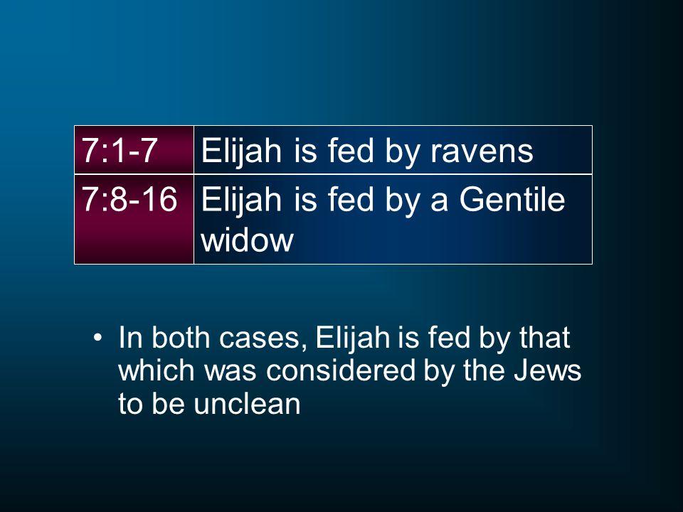 Elijah is fed by a Gentile widow