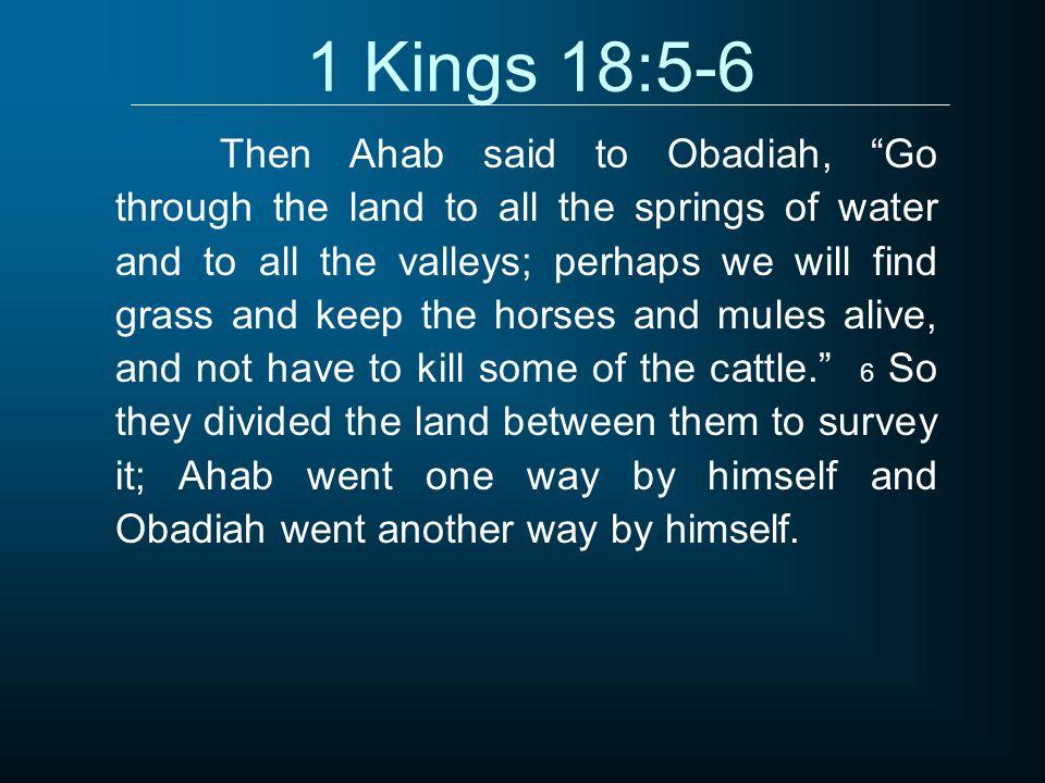 1 Kings 18:5-6