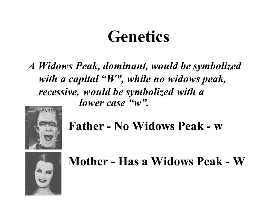 Genetics Father - No Widows Peak - w Mother - Has a Widows Peak - W