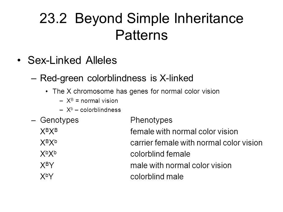 23.2 Beyond Simple Inheritance Patterns