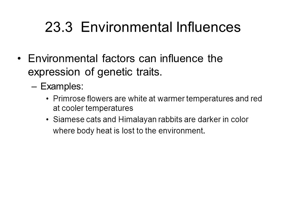 23.3 Environmental Influences