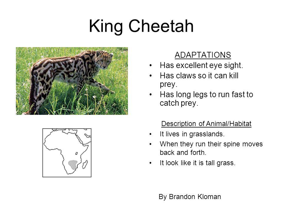 Description of Animal/Habitat