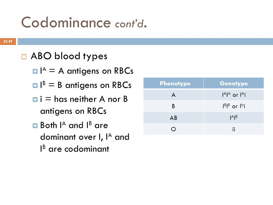 Codominance cont'd. ABO blood types IA = A antigens on RBCs