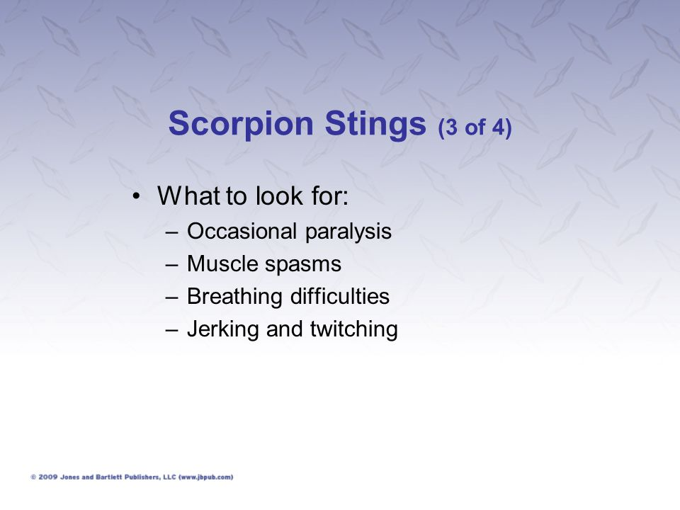 Scorpion Stings (3 of 4) What to look for: Occasional paralysis