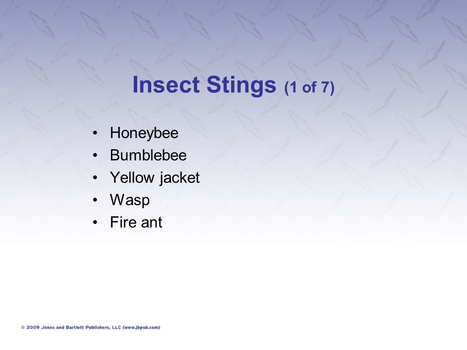 Insect Stings (1 of 7) Honeybee Bumblebee Yellow jacket Wasp Fire ant