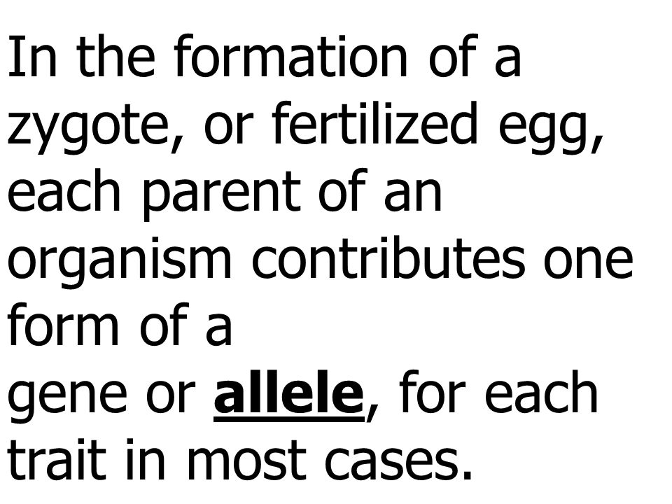 In the formation of a zygote, or fertilized egg, each parent of an