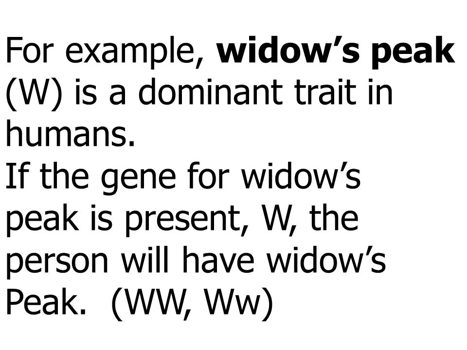 For example, widow's peak (W) is a dominant trait in humans.