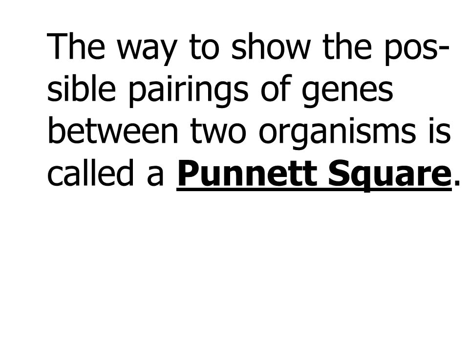 The way to show the pos- sible pairings of genes between two organisms is called a Punnett Square.