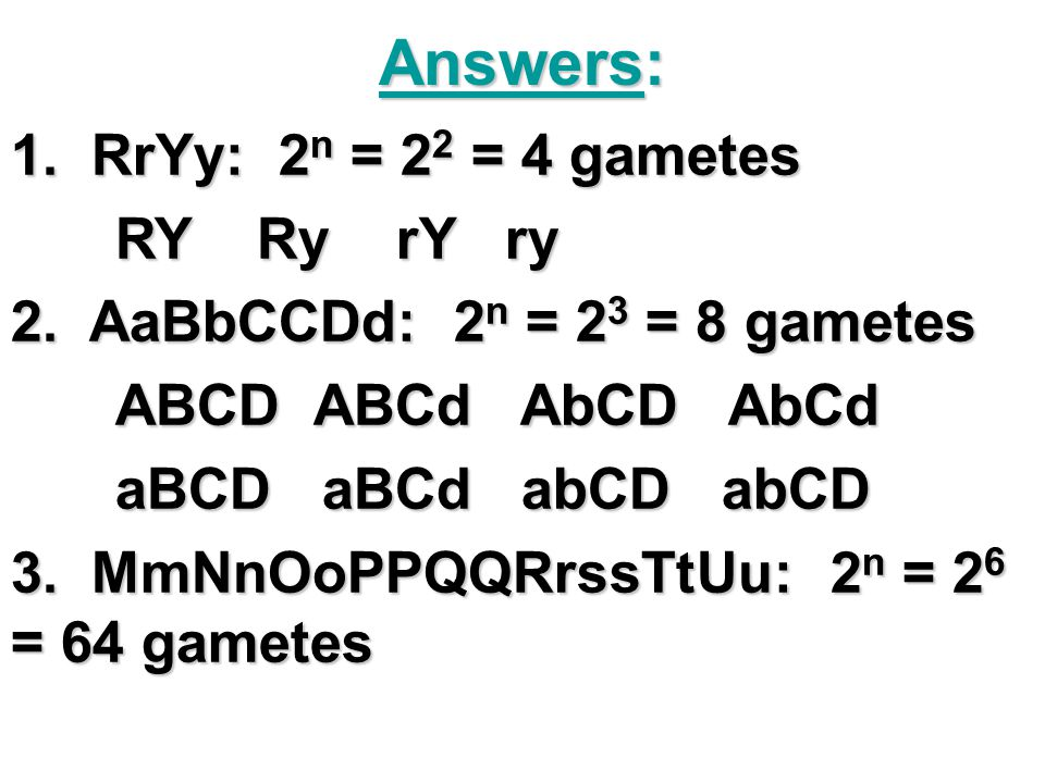 Answers: 1. RrYy: 2n = 22 = 4 gametes RY Ry rY ry