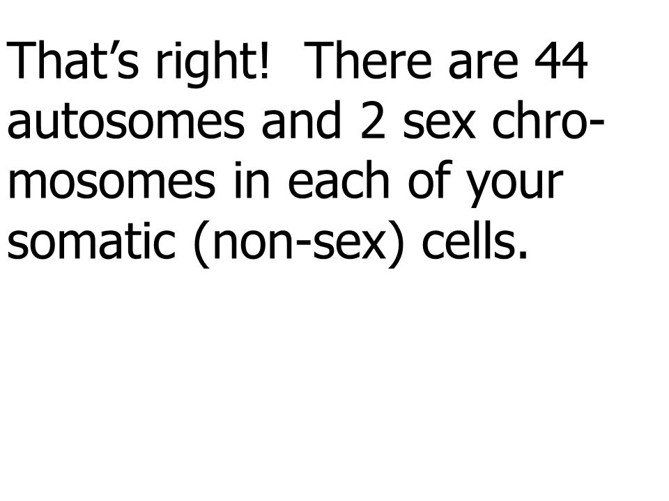 That's right. There are 44 autosomes and 2 sex chro- mosomes in each of your.