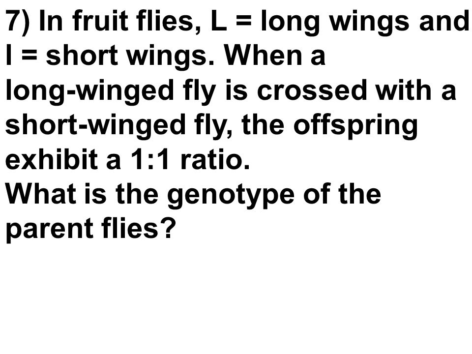 7) In fruit flies, L = long wings and