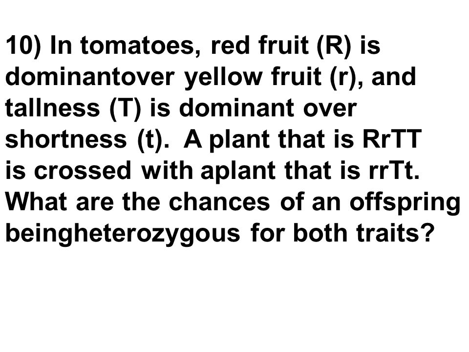 10) In tomatoes, red fruit (R) is