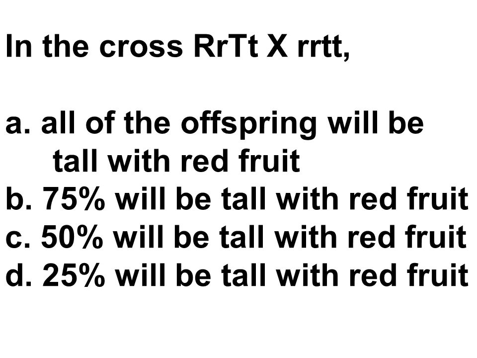 In the cross RrTt X rrtt, all of the offspring will be tall with red fruit. b. 75% will be tall with red fruit.