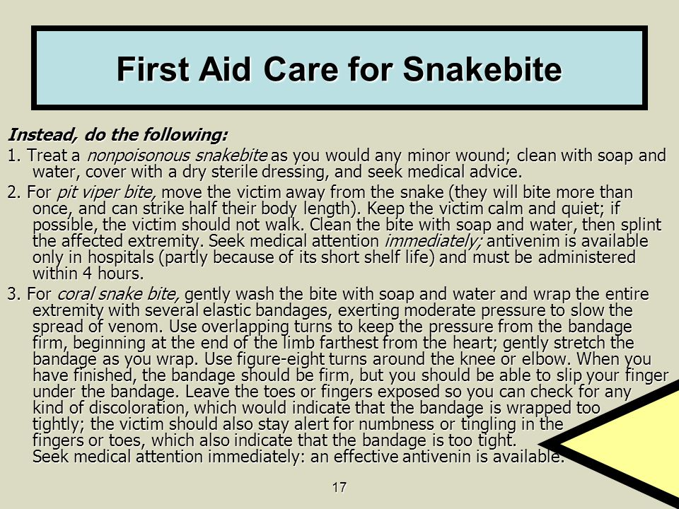 First Aid Care for Snakebite
