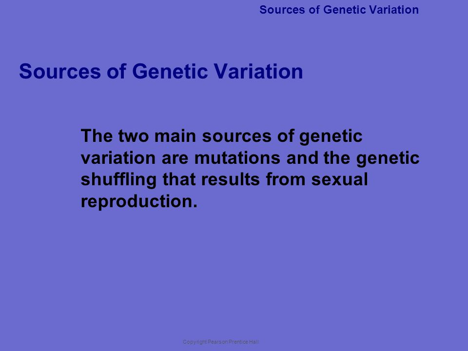 Sources of Genetic Variation