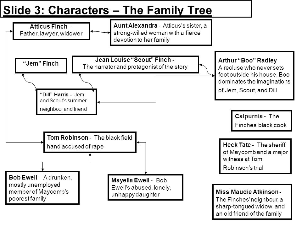 the story of finches family in harper lees book to kill a mockingbird To kill a mockingbird is a book written by harper lee the to kill a mockingbird study guide contains a biography of harper lee, literature essays, quiz questions, major themes, characters, and a f.