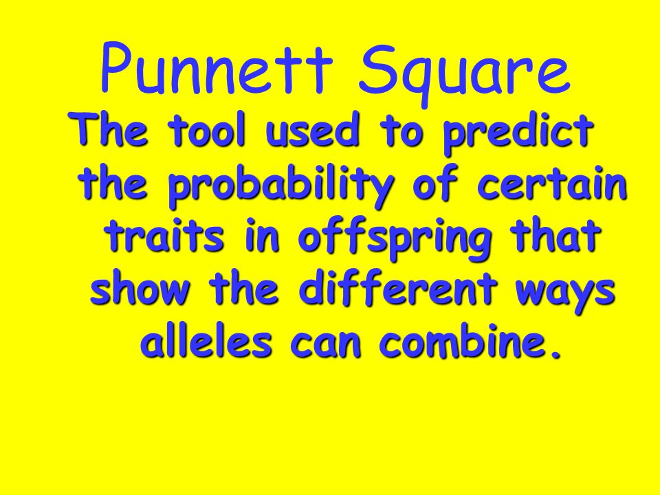 Punnett Square The tool used to predict the probability of certain traits in offspring that show the different ways alleles can combine.