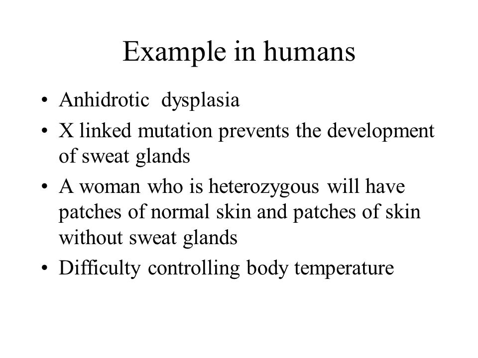 Example in humans Anhidrotic dysplasia