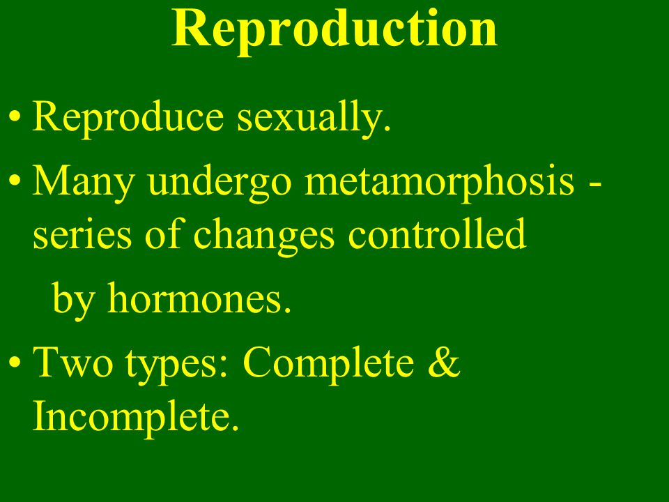Reproduction Reproduce sexually.