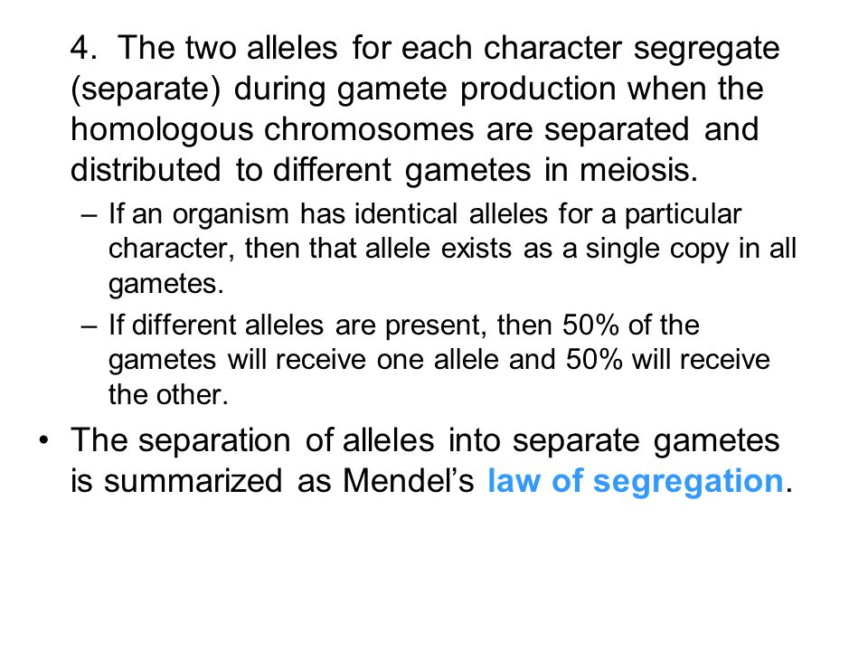 4. The two alleles for each character segregate (separate) during gamete production when the homologous chromosomes are separated and distributed to different gametes in meiosis.